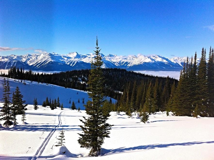 jean-ann-skiing6